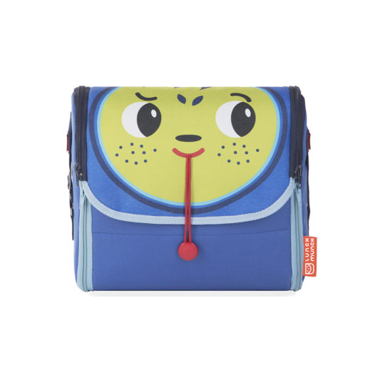 insulated kids lunch bag