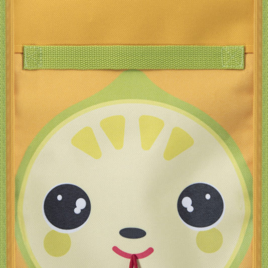 insulated lunch bag for kids_face view